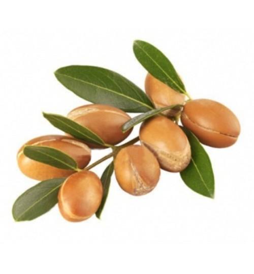 Argan (ARGAN OLEUM) hladno tiješteno biljno ulje
