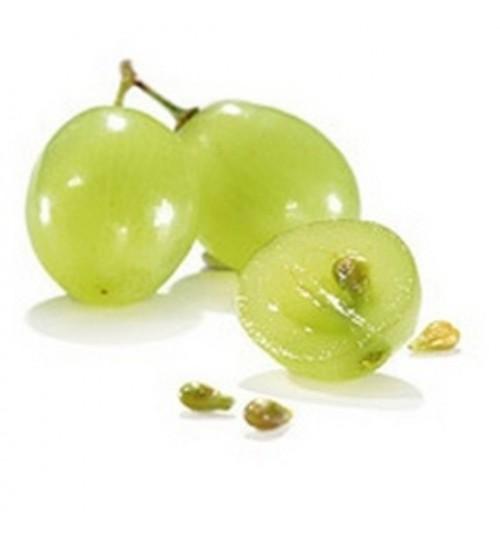 Grožđe, sjemenke (VITIS VINIFERAE SEMEN OLEUM press) hladno tiješteno biljno ulje