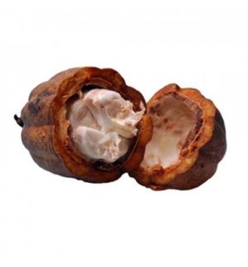 Kakao maslac DAB (CACAO OLEUM DAB)