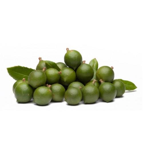 Makadamija (MACADAMIA  OLEUM) hladno tiješteno biljno ulje