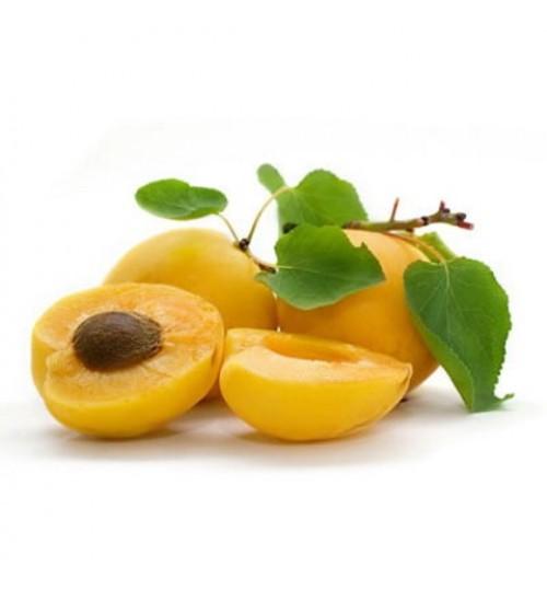 Marelica (PRUNUS ARMENIACA OLEUM) hladno tiješteno biljno ulje
